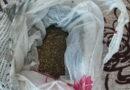 Полицейские пресекли торговлю марихуаной