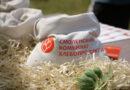 На реконструкцию комбикормового производства в Смоленске направят 200 млн рублей