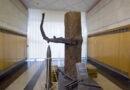 Смолян приглашают на экскурсию, посвященную 80-летию первого боевого применения «катюш»